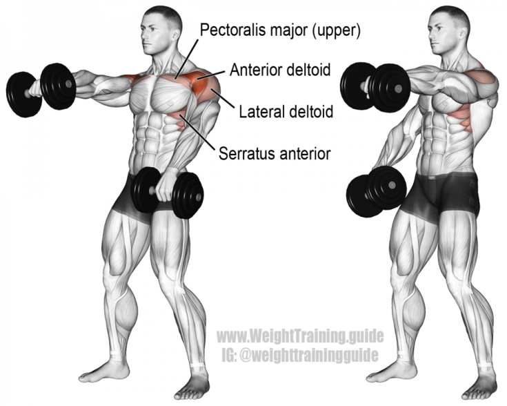 Alternating-dumbbell-front-raise-990x792.png