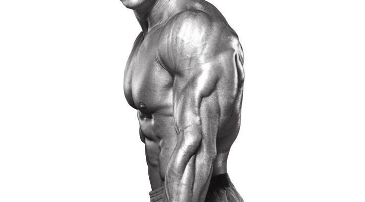 1109-muscular-triceps.jpg