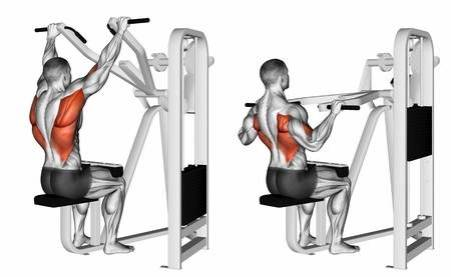 60334063-grip-machine-lat-pulldown-exercising-for-bodybuilding-target-muscles-are-marked-in-red-3d-illustrati