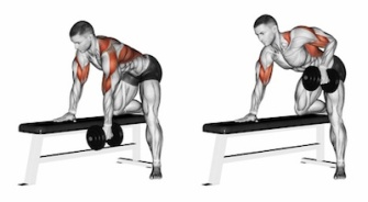 End dumbbell with one hand. Exercising for bodybuilding. Target muscles are marked in red. Initial and final steps. 3D illustration