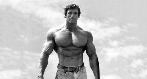 arnold-schwarzenegger-chest-workout-4.jpg