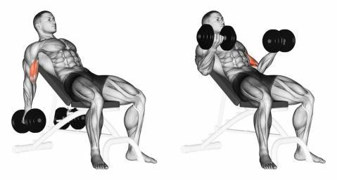 exercise-42.jpg