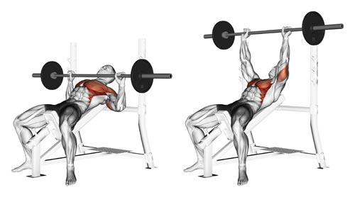 incline-bench-press.jpg