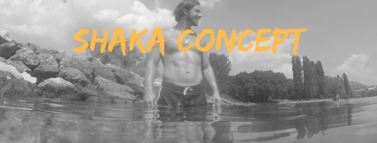 Shaka Concept.jpg