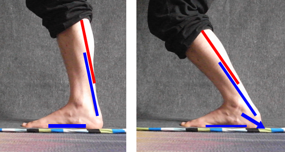 ankle-mobility-heel-back-plus.png