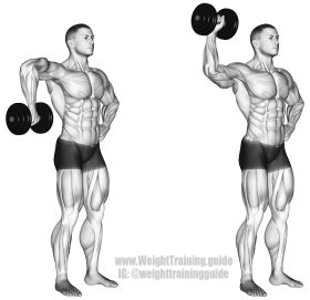 dumbbell-cuban-rotation
