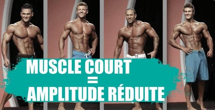 musclecourtamplitude copy.jpg